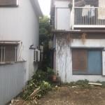 大田区邸宅内樹木伐採と伐根