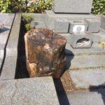 神奈川県石の移動作業