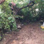 柏市工事前の庭石の撤去